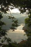 Lago nella mattina attraverso i rami di albero Immagini Stock Libere da Diritti