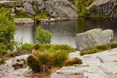 Lago nella pioggia in Norvegia Immagini Stock