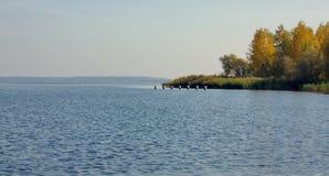 Lago nella stagione di autunno fotografia stock