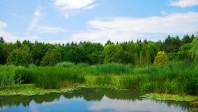 Lago nella terra di Montreal, Canada Immagine Stock Libera da Diritti