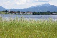 Lago nelle alpi Immagini Stock Libere da Diritti