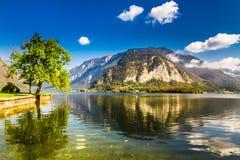 Lago nelle alpi di estate, Hallstatt, Austria Fotografia Stock Libera da Diritti