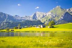 Lago nelle montagne svizzere Immagini Stock