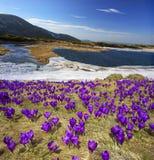 Lago Nesamovyte mountain Foto de Stock