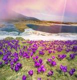 Lago Nesamovyte mountain Fotos de Stock Royalty Free