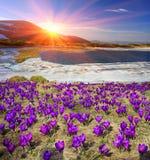 Lago Nesamovyte mountain Foto de Stock Royalty Free