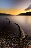 Lago Ness Monster Immagine Stock