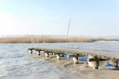 Lago Neusiedl Fotografia Stock Libera da Diritti