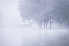 Lago nevoento da manhã imagens de stock royalty free