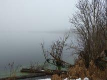 Lago nevoento do inverno com algas verdes foto de stock