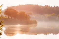 Lago nevoento do verão coberto na luz solar brilhante da manhã fotos de stock royalty free