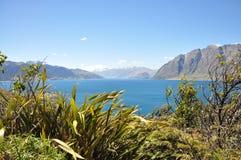 Lago new Zealand fotografía de archivo libre de regalías