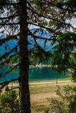 Lago no Forest Park Durmitor montenegro fotos de stock