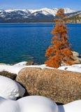 Lago no inverno Foto de Stock