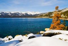 Lago no inverno Fotografia de Stock Royalty Free