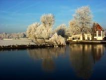 Lago no inverno fotos de stock