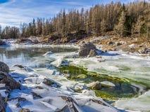 Lago no inverno Imagem de Stock