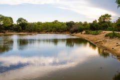 Lago no Jackalberry Safari Lodge, África do Sul Imagem de Stock