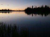 Lago no nascer do sol com patos voo e salto dos peixes filme