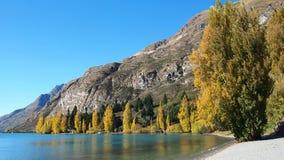 Lago no newzeland Imagens de Stock