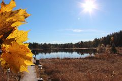 Lago no outono Fotos de Stock
