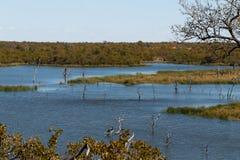 Lago no parque de Kruger foto de stock