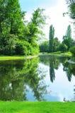 lago no parque do verão Imagem de Stock Royalty Free
