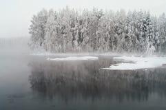 Lago non gelato nelle foreste di inverno Fotografie Stock Libere da Diritti