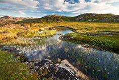 Lago Nord Immagine Stock Libera da Diritti