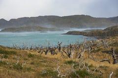 Lago Nordenskjold, Torres del Paine National πάρκο, Χιλή Στοκ εικόνα με δικαίωμα ελεύθερης χρήσης
