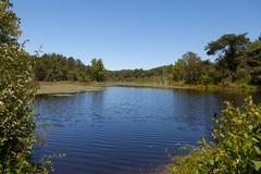 Lago norte cumberland WMA Fotografia de Stock