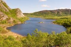 Lago norueguês Foto de Stock Royalty Free