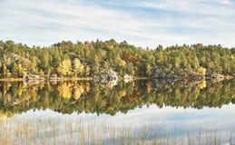 Lago norueguês, em torno da floresta do outono Foto de Stock Royalty Free