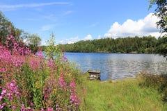 Lago norway Foto de archivo libre de regalías
