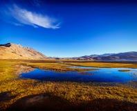 Lago nos Himalayas, Ladakh Tso Moriri, Índia Fotos de Stock Royalty Free