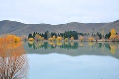Lago, Nueva Zelandia Fotografía de archivo