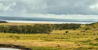 Lago Nukuru, Kenya foto de stock royalty free