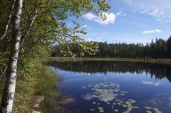 Lago in Nuuksio NP, Finlandia Fotografia Stock