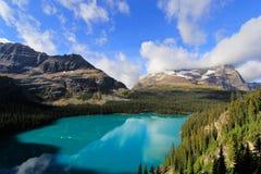 Lago O'Hara, Yoho National Park, Canada Immagini Stock Libere da Diritti