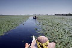 "Lago Obretin do †do delta de Danúbio "" Imagens de Stock"