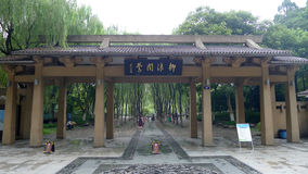 Lago ocidental Hangzhou, Oriole que canta nos salgueiros Imagem de Stock Royalty Free