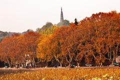 Lago ocidental Hangzhou Zhejiang China autumn antigo do pagode de Baochu Imagens de Stock