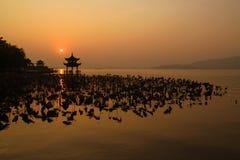 Lago ocidental (XiHu) fotografia de stock