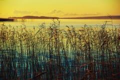 Lago Onego Fotografia Stock Libera da Diritti