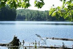 Lago in Ontario Fotografie Stock