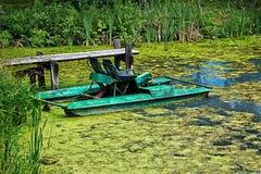 Lago Overgrown Imagem de Stock