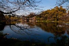 Lago pacífico fotos de archivo libres de regalías