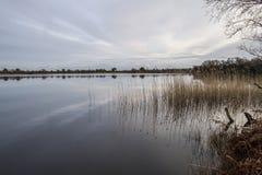 Lago pacifico con il cielo drammatico e la riflessione Immagini Stock Libere da Diritti