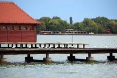 Lago Palic Subotica Serbia Fotografia Stock Libera da Diritti