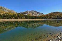 Lago Palu en el otoño - paisaje de Valmalenco, Valtelina, Italia foto de archivo